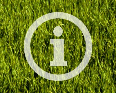 Informacja - ikona